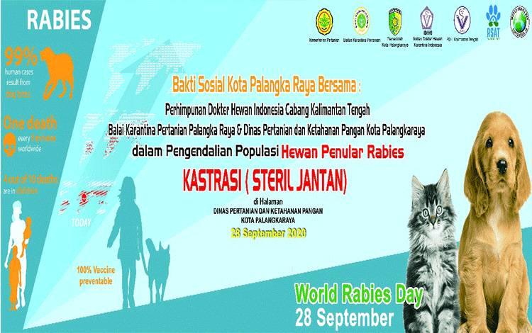 Flyer pengumuman pelaksanaan Kastrasi oleh Distankepang Palangka Raya