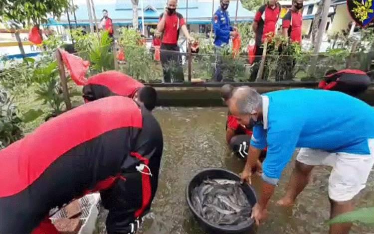 Ditpolairud Polda Kalteng saat melaksanakan panen raya ikan lele di kolam miliknya.