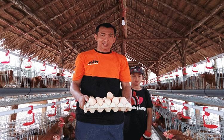 Budidaya ayam petelur Kelompok Usaha Mungkur Bersinar.