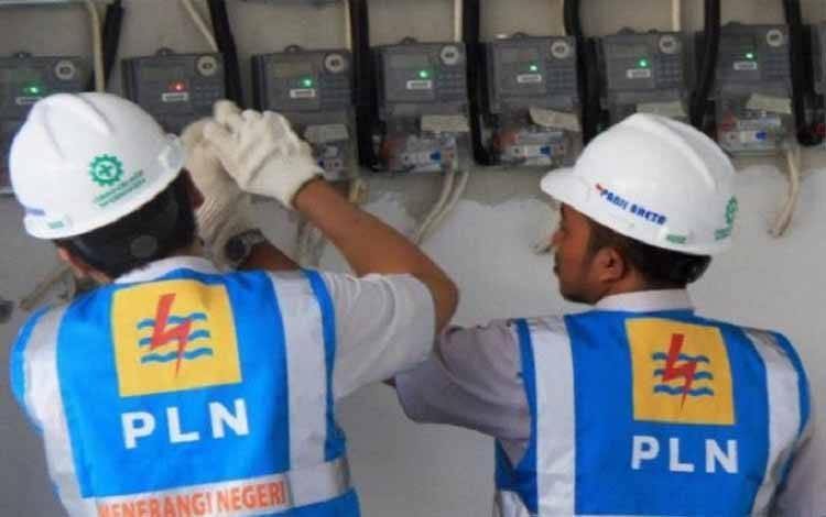 Petugas PLN saat memeriksa pemakaian meter