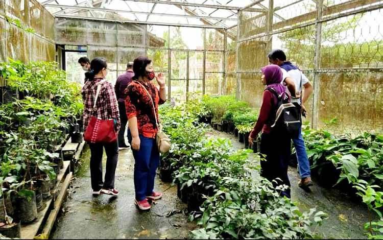 Rombongan Dinas Pertanian Kabupaten Gunung Mas ketika berada di balai benih tanaman hortikultura di KM 7 arah Muara Teweh - Puruk Cahu