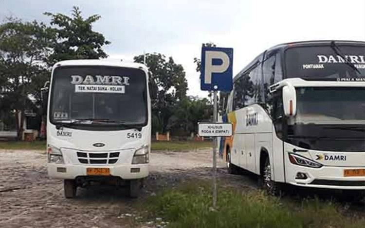 Bus Damri terparkir di Terminal Natai Suka, Pangkalan Bun.