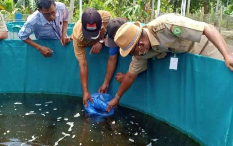 Dinas Perikanan Kotim saat menabur benih ikan untuk budidaya guna meningkatkan produksi ikan