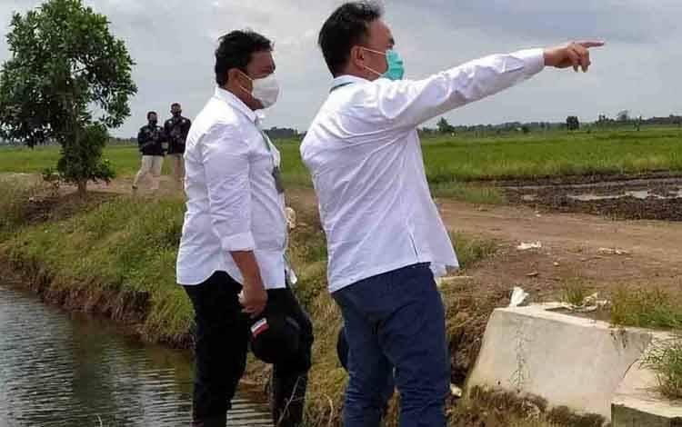Gubernur Kalteng, Sugianto Sabran dan Bupati Pulang Pisau, Edy Pratowo saat meninjau Kawasan food estate Kalimantan Tengah
