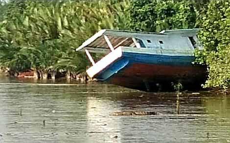 Kemunculan buaya di tepi Sungai Kumai yang tertangkap kamera.
