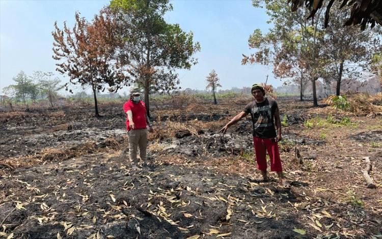 Seorang tersangka pembakar lahan di wilayah Kelurahan Bansir Laut, Kecamatan Pontianak Tenggara, Pontianak, berinisial SB (41), saat menunjukkan lokasi atau TKP lahan gambut yang dibakarnya hingga meluas ke lahan warga lainnya. (Istimewa)