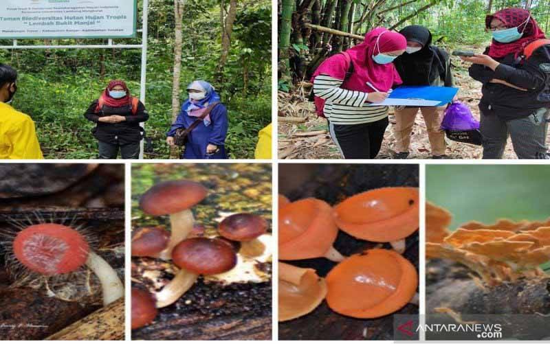Para peneliti dari mahasiswa Program Studi Pendidikan Biologi FKIP ULM saat berada di Taman Biodiversitas, Banjarmasin, Kalsel, Senin (29/3/2021). (foto : ANTARA/Firman)