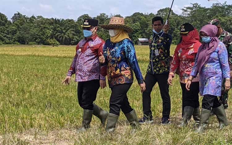 Camat Kota Besi Ninuk Muji Rahayu batik biru saat mengajak Bupati Kotim Halikinnor melihat areal pertanian di Kota Besi
