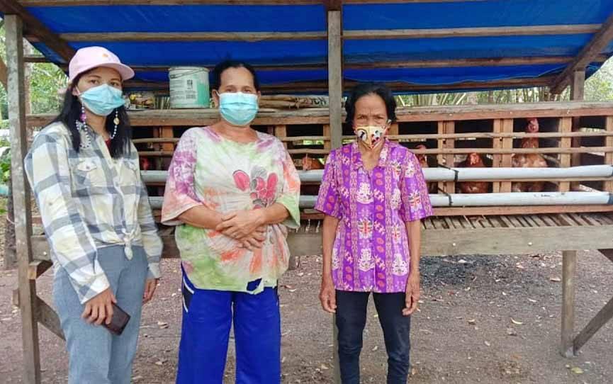Pengurus PEREMPUAN AMAN Barito Timur meninjau kelompok budidaya ayam petelur.