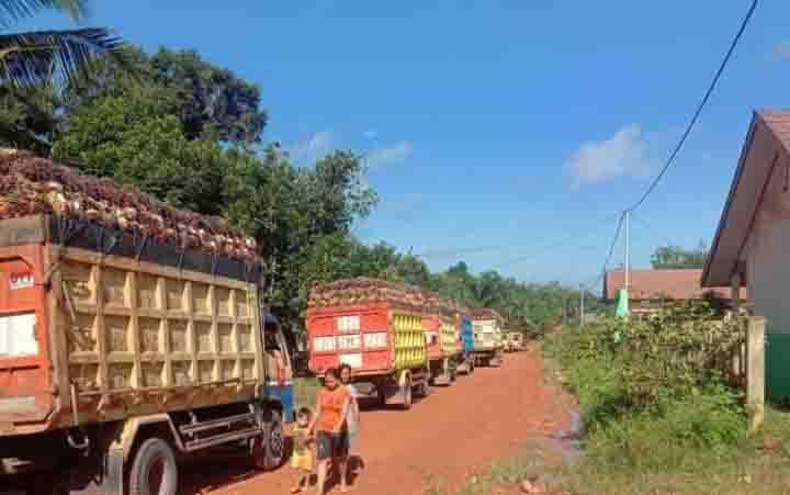 Padatnya aktivitas kendaraan perusahaan di Jalan Dusun Terobos, Desa Bukit Raya, Kecamatan Cempaga Hulu, Kabupaten Kotawaringin Timur.