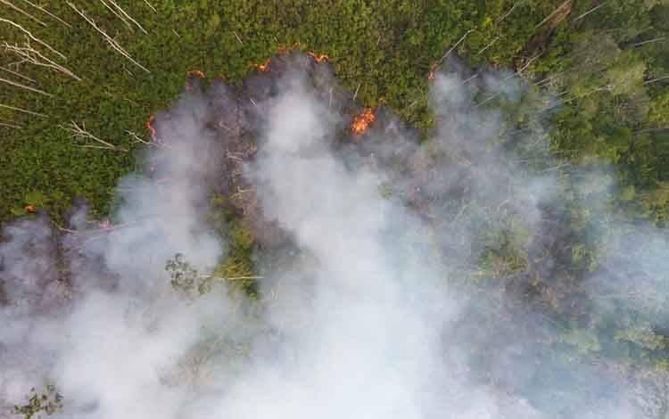 Hutan di perbatasan antara Kecamatan Kamipang dengan Tasik Payawan terbakar siang ini