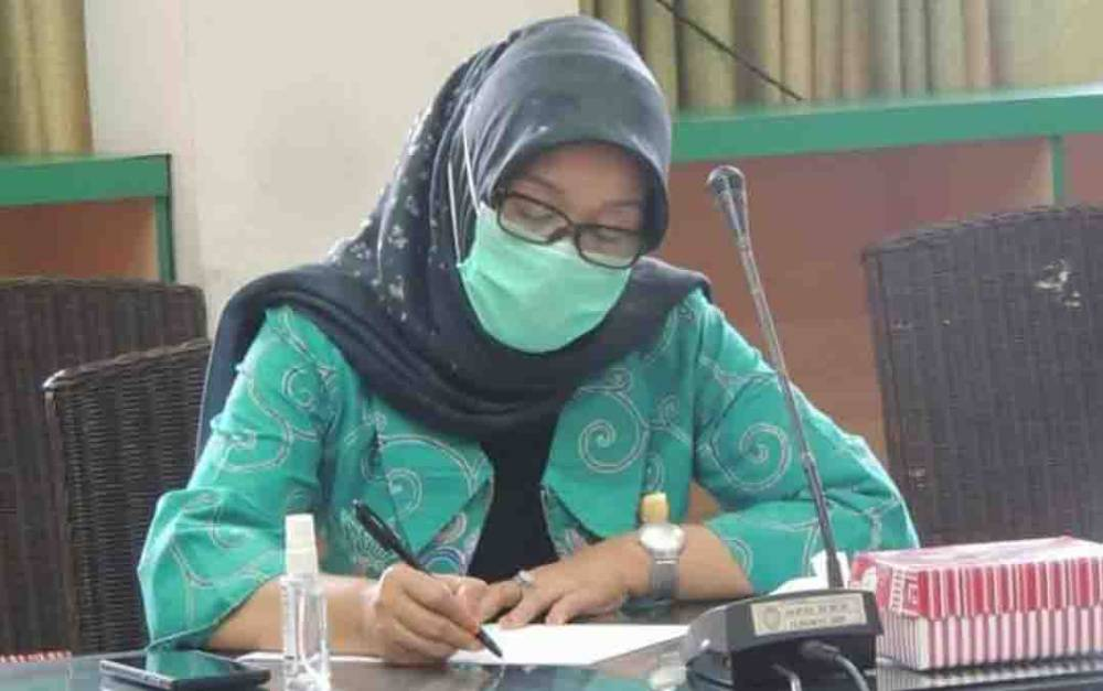 Ketua tim Pembahasan Daerah Otonomi Baru (DOB) DPRD Kalteng, Siti Nafsiah