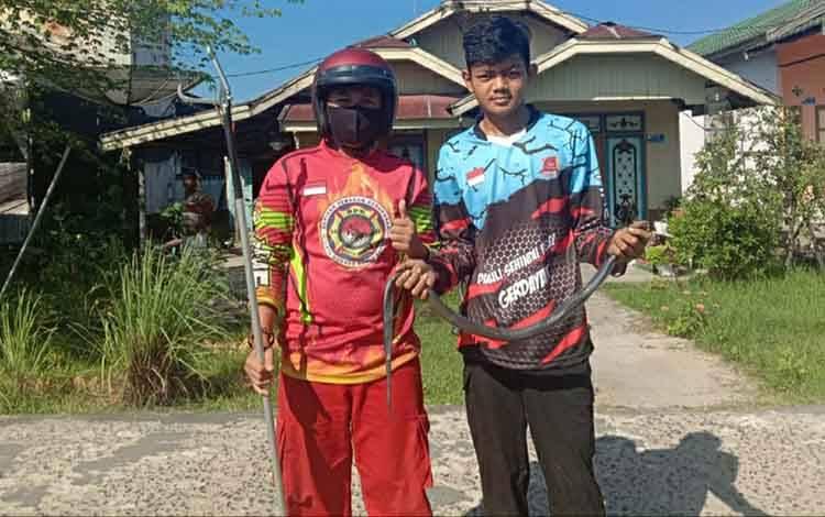 Tim Animal Rescue BPK Tirta Borneo Kuala Kapuas seusai membantu evakuasi ular kobra yang masuk rumah warga pada Sabtu, 5 Juni 2021.