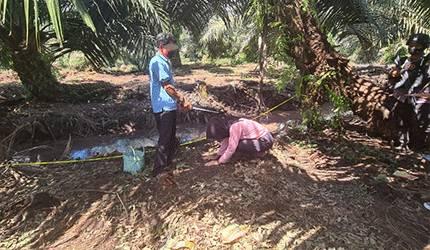 Pelaku saat memperagakan aksinya membunuh sang istri pada pra rekontruksi yang digelar Polres Kotim.