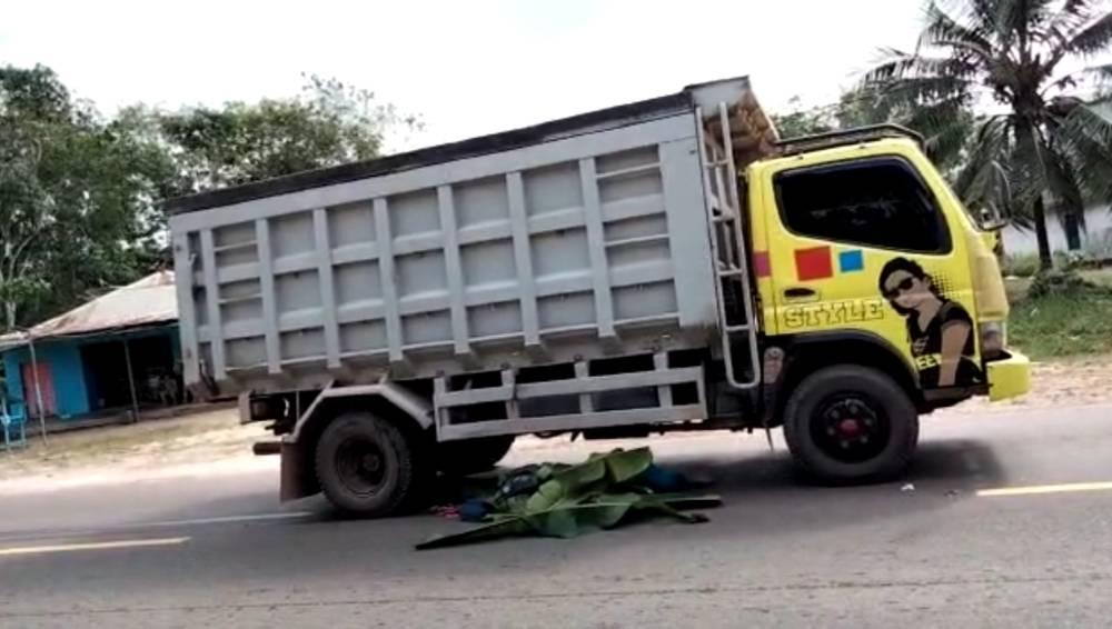 Korba tewas kecelakaan yang ditutup dengan pelepah pisang, tepat berada di bawah bak truk