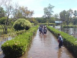 BANJIR : SMPN 1 Sebangau Kuala terendam banjir beberapa waktu lalu. Dinkes Pulpis mengimbau agar warga korban banjir waspada terhadap penyakit yang menyerang setelah banjir surut.