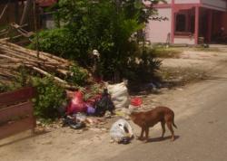 SAMPAH: Masalah pencemaran lingkungan, khususnya sampah, menghantui Kabupaten Banjar.