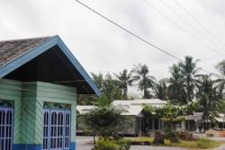 SEI TABUK: Pohon kelapa dengan daunnya yang indah menjulang di lingkungan permukiman warga Desa Sei Tabuk, Kecamatan Pantai Lunci, Kabupaten Sukamara. Kehidupan masyarakat yang masih alami membuat Sie Tabuk diwacanakan menjadi desa wisata.