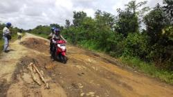 RUSAK PARAH : Warga Desa Sei Kayu, Kecamatan Kapuas Barat mengeluhkan jalan poros di kecamatan tersebut yang rusak parah. Padahal ruas jalan ini sangat ramai dilalui kendaraan.