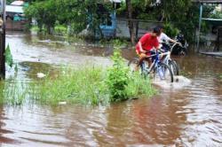 LANGGANAN BANJIR : Banjir yang terjadi di Jalan Ilon Desa Mantaren I, Kecamatan Kahayan Hilir beberapa waktu lalu. Warga mengeluh karena daerahnya menjadi langganan banjir. Warga meminta Pemkab Pulang Pisau segera mengatasi banjir.