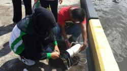 SAMPLE: Tim Badan Lingkungan Hidup Kotawringin barat mengambil sample air Sungai Kumai pasca tumpahnya CPO PT Gemareksa. Tidak ditemukan ikan mati di areal tersebut.