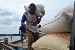 ANGKUT BERAS : Seorang buruh pelabuhan mengangkut beras lokal yangbaru tiba dari Pegatan, Katingan, untuk di bawa ke gudang distributor beras lokal.