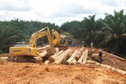 PERBAIKAN JEMBATAN: Jembatan Sungai Mentajai di Nanga Bulik kini dibongkar. Jembatan berbahan kayu itu sudah lapuk dan akan diganti dengan yang baru berkat sumbangan sejumlah perusahaan swasta di Lamandau.