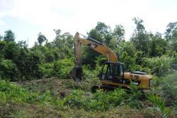 PROYEK JALAN : Sebuah eksavator dijalankan untuk proyek peningkatan jalan Desa Natai Raya menuju Pangkalan Satu, Minggu (28/6/2015). Proyek tersebut diduga asal lantaran mengorbankan kebun warga.