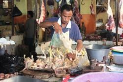 BERSIHKAN AYAM: Pedagang ayam di Pasar Ikan Mentaya (PIM) tampak membersihkan ayam yang ditawarkan kepada para pembeli, Sabtu (4/7/2015).