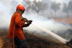 KEBAKARAN LAHAN : Petugas pemadam kebakaran sedang memadamkan api yang membakar lahan masyarakat di Riau beberapa waktu lalu. Sementara itu, hujan lebat yang berlangsung selama kurang lebih 45 menit di Kota Kasongan, Sabtu (25/7/2017) telah memadamkan sejumlah titik api dan mengusir kabut asap yang mengepung langit Katingan beberapa hari terakhir.
