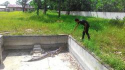 TEMUKAN BUAYA: Seekor buaya jenis Senyulong ditemukan terjerat jala milik salah seorang nelayan di sungai di Desa Pangkalan Tiga, Pangkalan Lada, Selasa (20/7/2015)