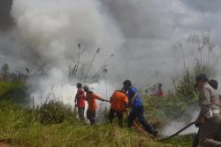 BPBD Kotawaringin Timur Paparkan Upaya Pencegahan Karhutla di Kotawaringin Barat