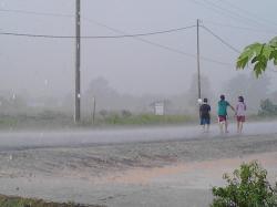 HUJAN: Hujan turun setelah kekeringan melanda Kota Pangkalan Bun dan sekitarnya, Kamis (27/8/2015) siang. Hujan lebih dari satu jam itu disambut gembira warga. Tampak anak-anak sengaja berjalan di tengah hujan deras di Jalan Rambutan, Kelurahan Baru, Pangkalan Bun.