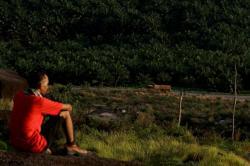 PERKEBUNAN SAWIT: Seorang pelancong duduk di atas bukit sambil menatap ke arah hamparan perkebunan sawit dan truk tangki pengangkut minyak sawit mentah (CPO) yang melintas di jalan Trans Kalimantan, kawasan Bukit Sintang, perbatasan Kabupaten Kotawaringin Barat dan Lamandau, Kalimantan Tengah, baru-baru ini.