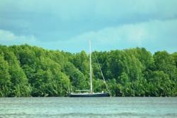 Sebuah kapal yacht labuh jangkar di Sungai Kumai, beberapa waktu lalu. Lantaran kabut asap, banyak peserta sail yang mengurungkan diri singgah ke Kobar. BORNEONEWS/RADEN ARYO