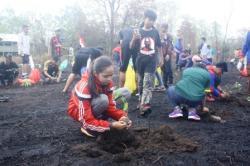 Sejumlah sukarelawan menanam bibit pohon di kawasan Beguruh, Taman Nasional Tanjung Puting (TNTP). DOK BORNEONEWS