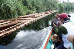 Polres Kapuas Amankan Puluhan Kayu Log Tak Bertuan
