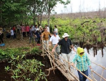 AKTIVITAS AKTIVIS LINGKUNGAN : Aktivis lingkungan saat meninjau lahan gambut di Pulang Pisau. Aktivis lingkungan umumnya mengambil bagian memberikan gagasan dalam upaya pencegahan kebakaran hutan dan lahan di Kabupaten Pulang Pisau.