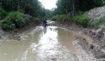 BERLUMPUR : Jalan yang menghubungkan lima desa di Kecamatan Dusun Utara ini berlumpur sehingga sangat sulit untuk dilalui kendaraan, Kamis (11/2/2016)