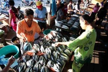 Yogyakarta Kampanyekan Makan Ikan Laut