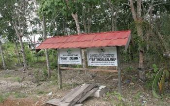 Salah satu kebun karet milik kelompok tani, di Jalan Bhayangkara Kelurahan, Puruk Cahu. BORNEONEWS/SUPRI ADI