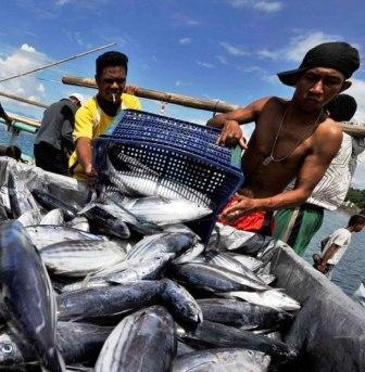 Pengusaha Lokal Belum Mampu  Menampung Hasil Tangkapan Nelayan