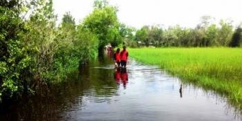 Akibat banjir siswa harus menyingsingkan celana panjang seragam sekolah agar tidak basah ketika melintas di jalan menuju pulang ke rumah. BORNEONEWS/DJEMMY NAPOLEON