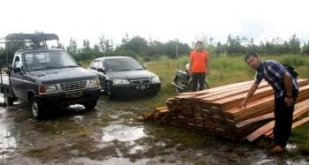 Barang bukti kayu olahan jenis meranti illegal yang telah berhasil diamankan petugas di Mapolres Barsel. BORNEONEWS/LAILY MANSYUR