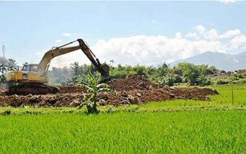 Lahan pertanian beralih fungsi. DOK BORNEONEWS