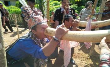 Minum tuak di gading gajah disuguhkan pada para tetamu istimewa oleh orang Kinipan. Ini adalah adat-istiadat yang telah berlangsung lama. (BORNEONEWS/Budi Baskoro)