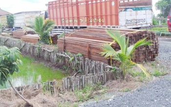 Ribuan potong kayu olahan jenis ulin dan meranti yang diamankan jajaran polres Kapuas pada tangkapan medio April-Mei 2016. (foto/sri hayati)