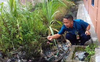 PENCEMARAN LIMBAH: Ketua BLH Sukamara, Iwan Miraza, Kamis (19/5/2016) meninjau lokasi permukiman warga yang tercemar akibat melubernya penampung limbah oli milik PT. PLN Sukamara.
