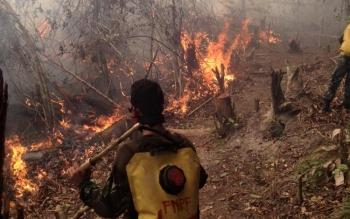 Mengantisipasi terjadinya bencana kebakaran hutan dan lahan (karhutla), komunitas relawan Care for Tanjung Puting (CTP) bakal menggelar simulasi penanganan karhutla 28 - 29 Mei 2016. BORNEO/ DOKUMENTASI CTP KARHUTLA