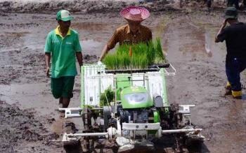 Kepala Distankannak Barito Utara, Ir Setia Budi saat melakukan penanaman padi menggunakan mesin tanam di desa Trahean beberapa waktu lalu.